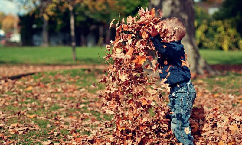 FotoKONKURSS: Pirmie soļi rudenī