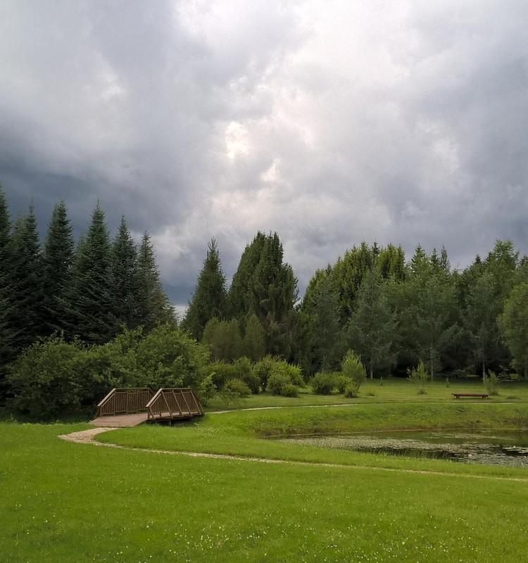 Trešais botāniskais dārzs- Kalsnavas arborētums