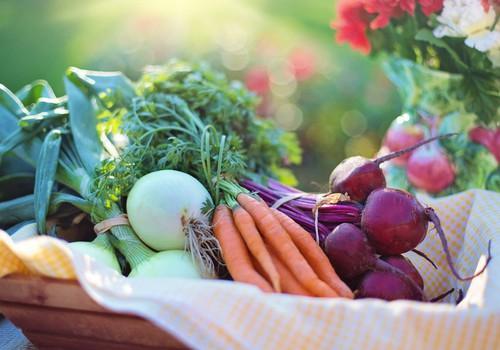 Kādus vitamīnus ieteicams uzņemt grūtniecības laikā?