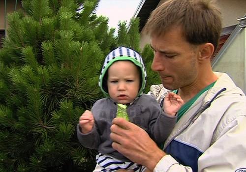 19.04.2015.TV3: bioloģiskā pārtika, vingrošana māmiņām ar bēbīšiem, izstāde bērniem