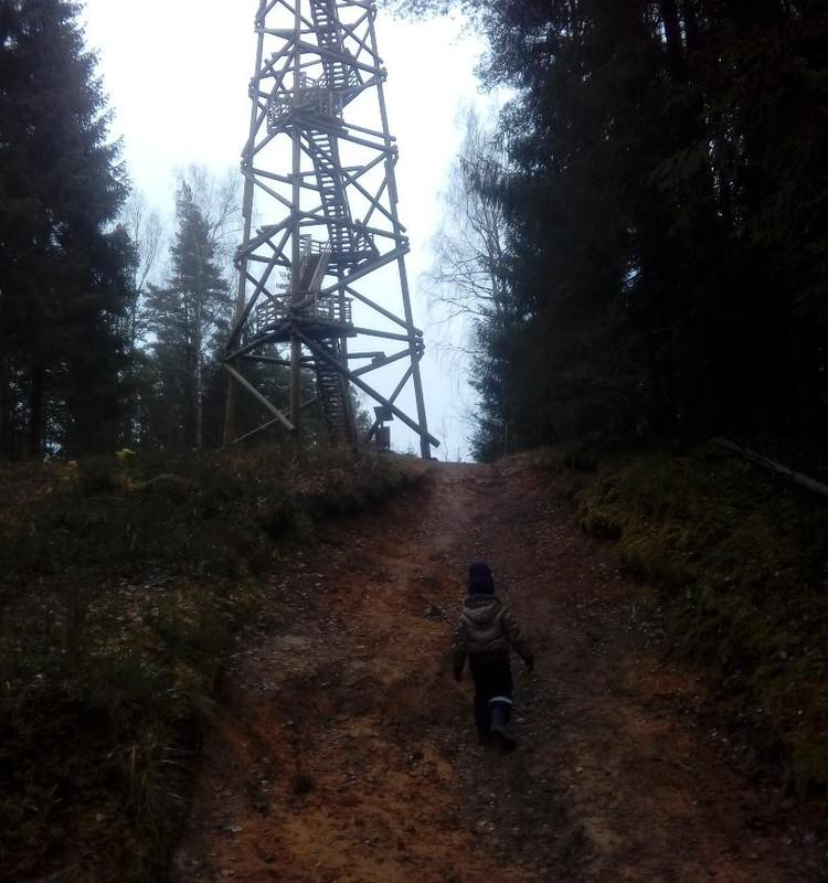 Ogres zilie kalni (ar ratiem un trīsgadnieku)
