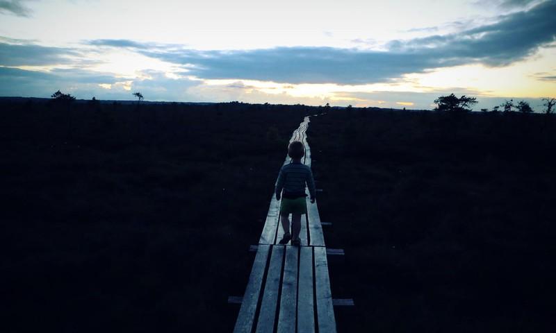 Viena no piedzīvojumiem pilnākā purva taka- Dunikas purvas taka
