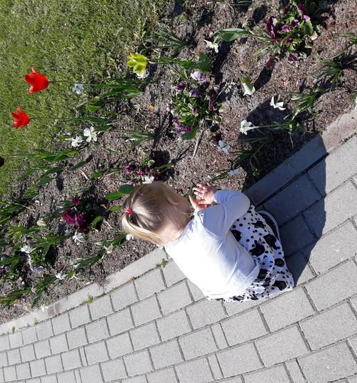 Divgadniece - lielais dabas pētnieks