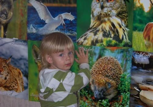 Ernesta dzīvnieku siena