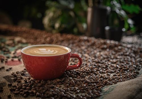 Kā pagatavot lielisku kafiju meža vidū?