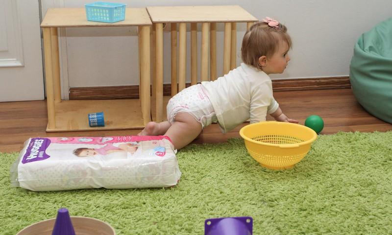 5 lietas, kas jāzina par mazajiem rāpotājiem