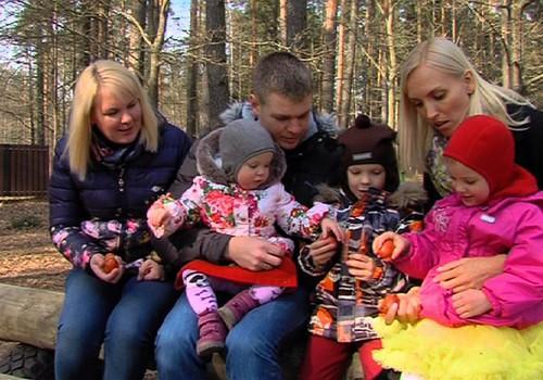 05.04.2015.TV3: Svinam Lieldienas Māmiņu Kluba ģimenēs