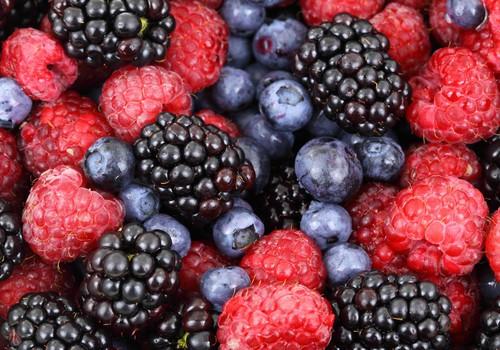 Upenes un jāņogas – veselīgiem našķiem un C vitamīna dienas devai