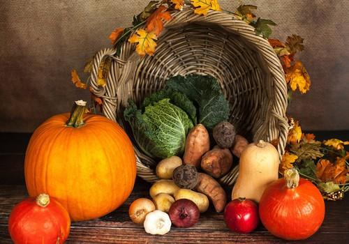 Vesels kā rutks: kādi vitamīni dzīvo rudens dabas veltēs