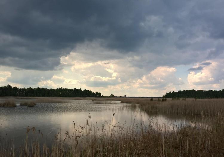Putnu valstība- Kaņieru ezers