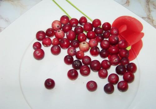 Marinēti āboli un bumbieri ar dzērvenēm