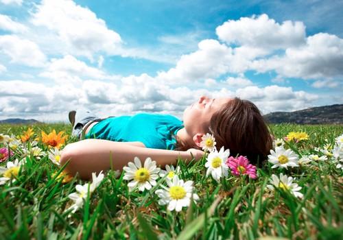 Farmaceita padomi: kādus ārstniecības augus ievākt ziemai