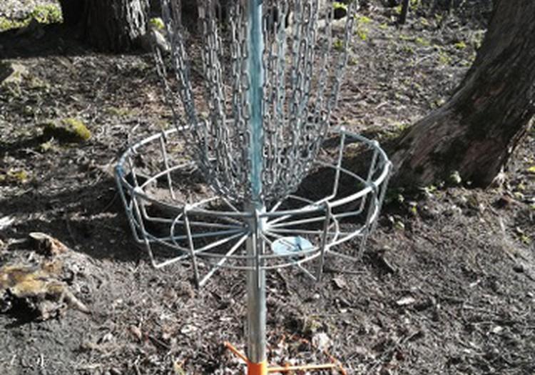Spēlējam disku golfu! Uz Lūšu dravu!