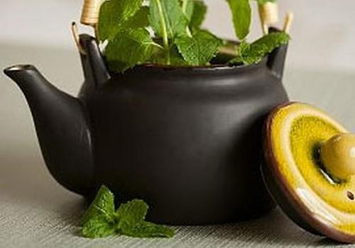 Uztura speciāliste par zāļu tēju došanu bērnam ikdienā