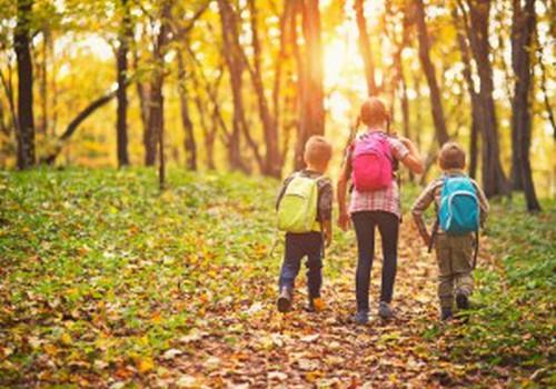Nākamgad palielinās pabalstus daudzbērnu un nepilnām ģimenēm