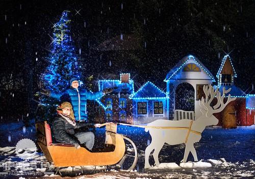 Ziemas naktis zoodārzā, jeb kā es Zoo desas cepu