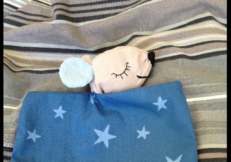 Ātrā miega pasaka