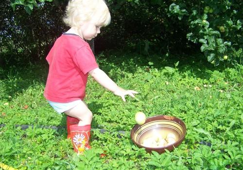 Ābolu laika pankūkas ar ābolu ievārījumu