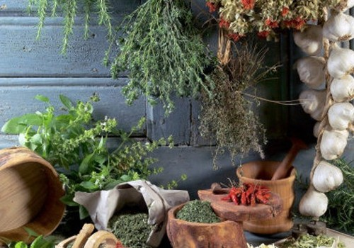 Ārstniecības augi zupās un salātos