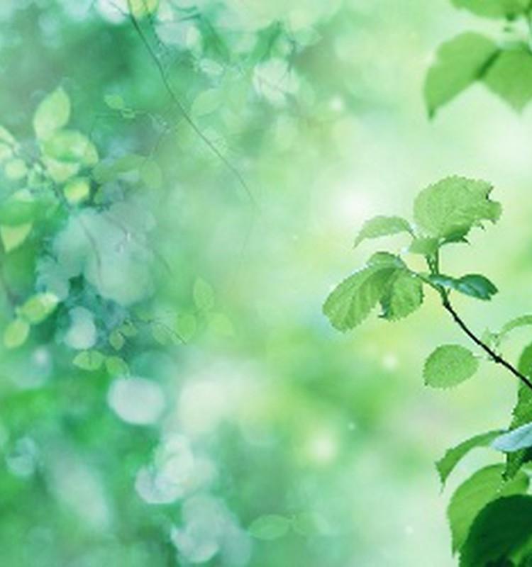 Zaļš un zaļāks