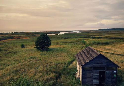 Randu pļavas, vieta kuru izbaudīt