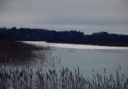 Ceļojam ziemā- Sātiņu dīķi un putnu novērošanas tornis