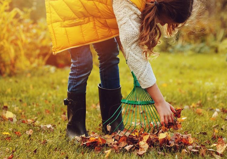6 soļi dārza sagatavošanai rudenim