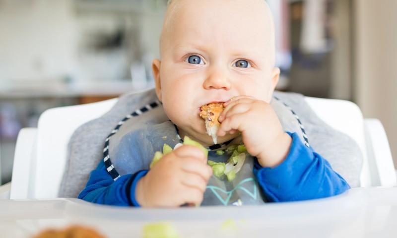 Ir jautājumi par bērnu vadīto ēšanu? Gatavojies mazuli piebarot? Lekcija pie Klaudijas Hēlas!