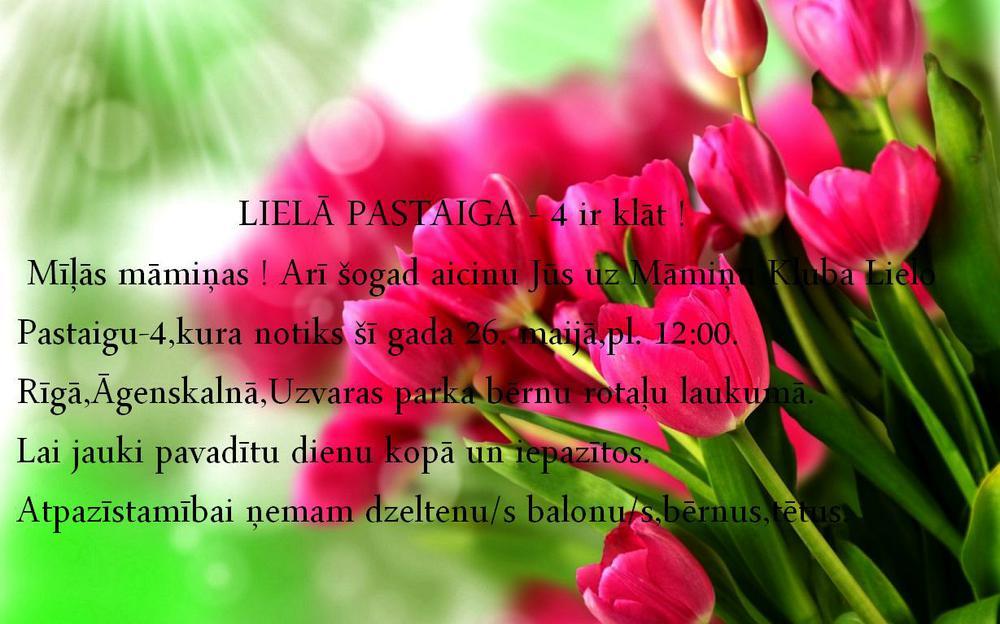 Цветы тюльпаны фото букеты 4